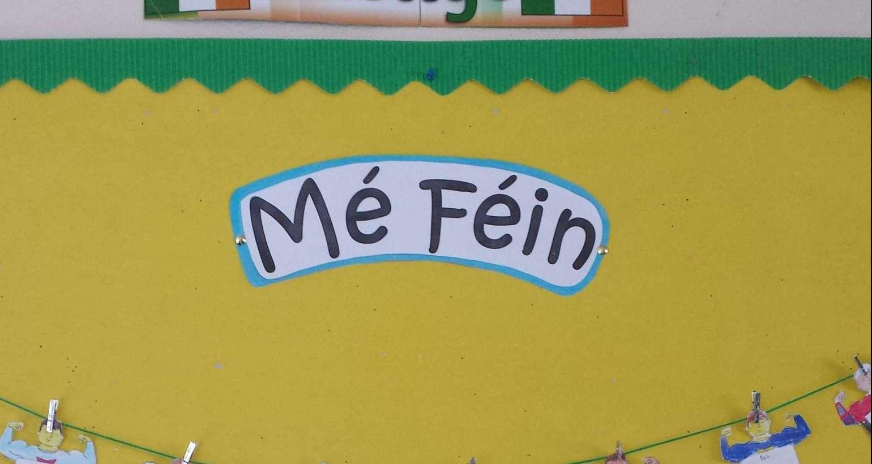 Mé Féin