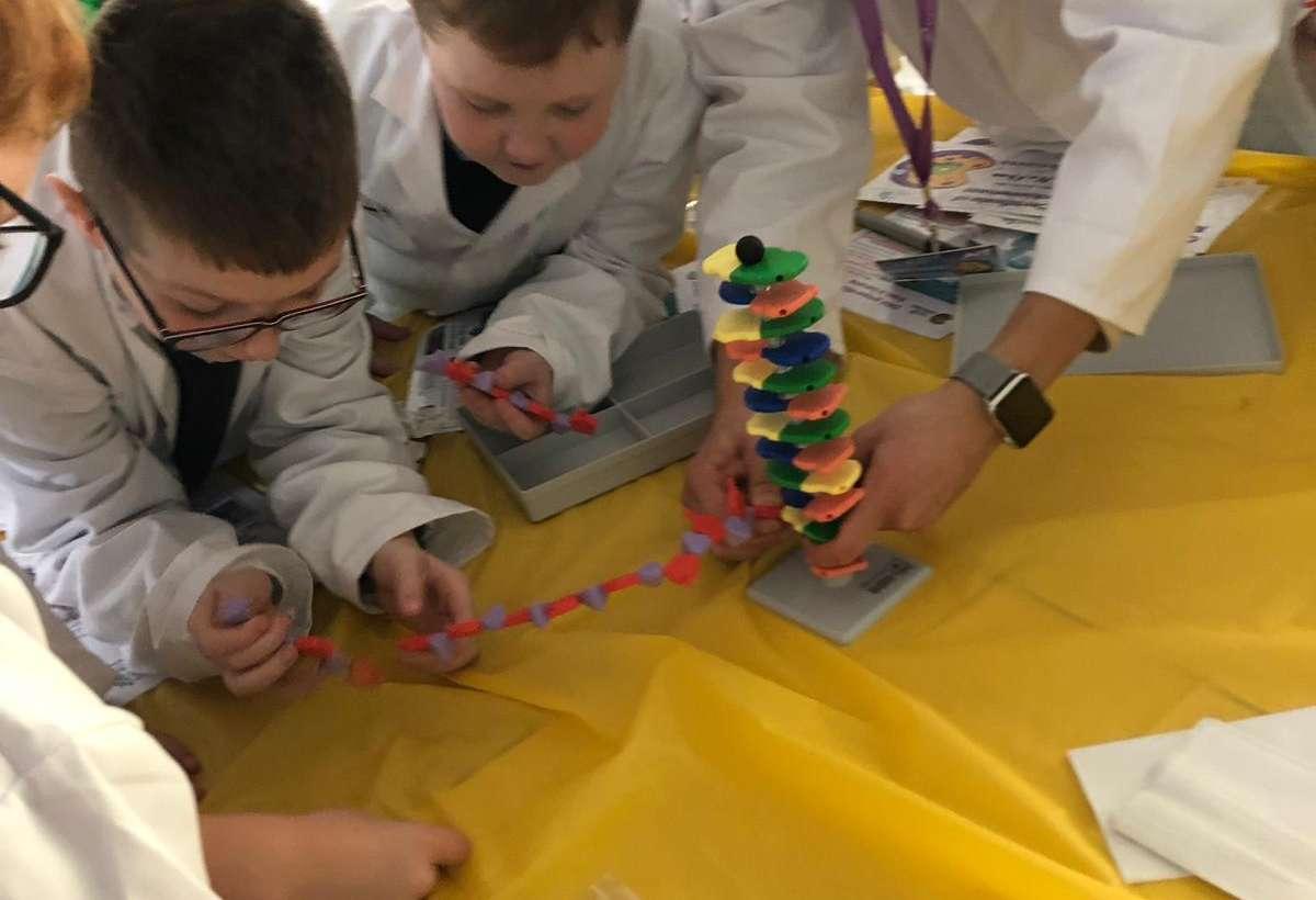 Fantastic DNA school visit